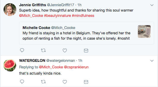 Belgian hotel offers fish for hire