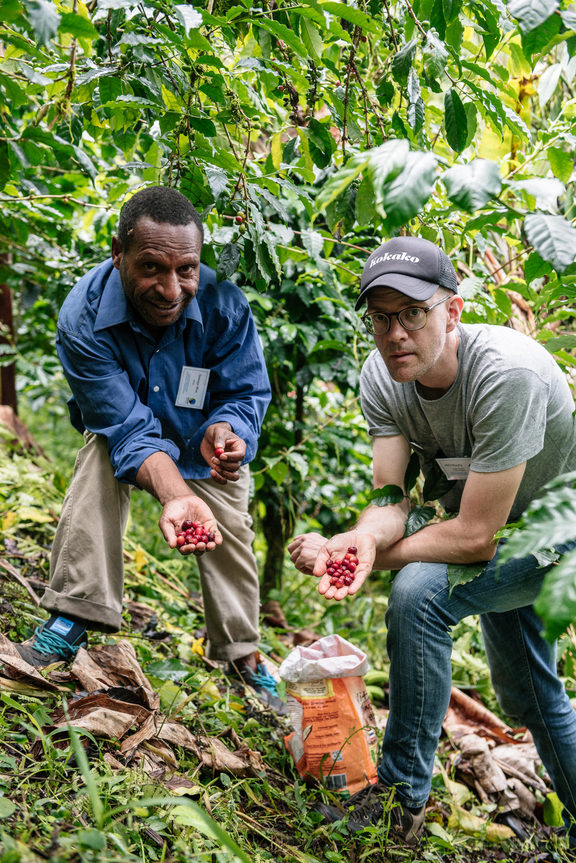 Sewege Moa of HOAC and Mike Murphy of Kokako discuss best-practice in coffee cherry harvesting.