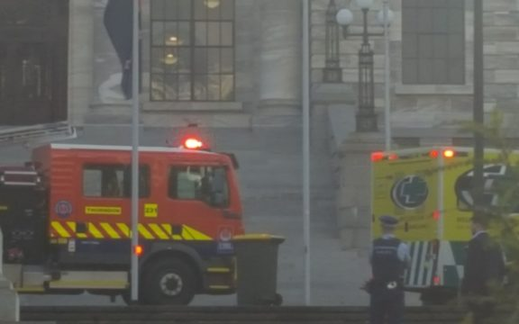 Police and emergency services at the scene outside Parliament where a man reportedly set himself on fire.
