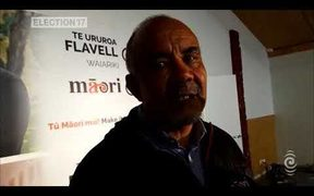 Te Ururoa Flavell won't be returning to Parliament after the election