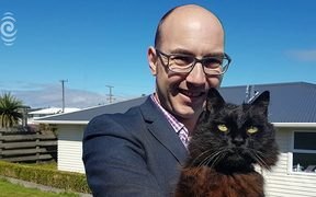 Wellington family reunited with missing cat after 9 years