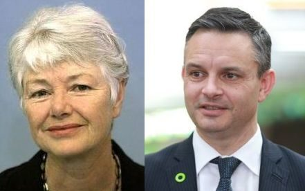 Former Green Party co-leader Jeanette Fitzsimons and the Greens current leader James Shaw.