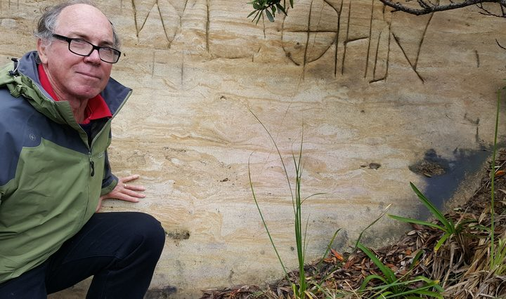 Bruce Hayward next to a cross-section of a moa footprint on a Muriwai road cutting.