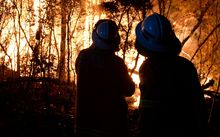 Volunteer firefighters' heart disease risk was higher than their paid counterparts, seen here battling a blaze in the Blue Mountains.
