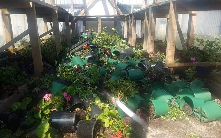 The plants in Khaled Al Jouja's greenhouse were strewn about in the attack. The plants in Khaled Al Jouja's greenhouse were strewn about in the attack.