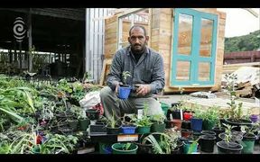 Syrian refugee overwhelmed by support for trashed garden: RNZ Checkpoint