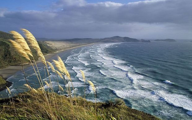 A sweeping view of Cape Reinga.