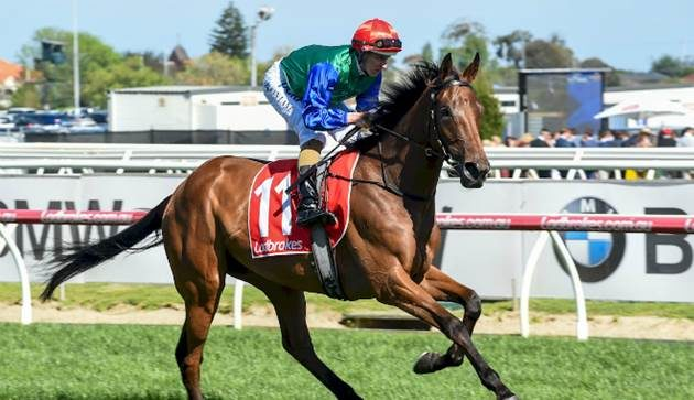 Bolter Boom Time shocks by winning $3m race