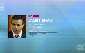 Greens leader James Shaw -  latest on coalition talks