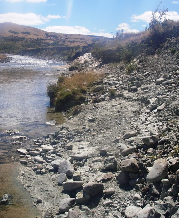 This stretch of the Manuherikia River in Otago is one of New Zealand's richest fossil sites, and 16-19 million years ago it was the shore of a giant lake.