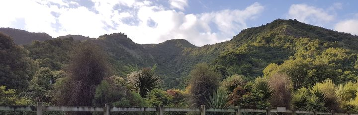 Waikereru Ecosanctuary near Gisborne includes regenerating forest on steep hillsides, and was set up by Dame Anne and Jeremy Salmond.