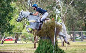 Clarke Johnstone rides Balmoral Sensation 2017 AUS-Mitsubishi Motors Australian International 3 Day Event. Victoria Park, Adelaide.