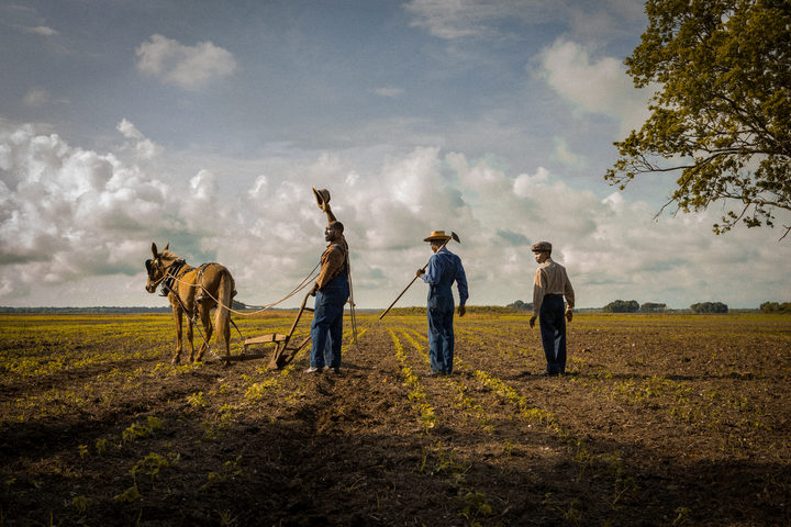 One of many images from Mudbound that bring to mind Terence Malick at his most lyrical.
