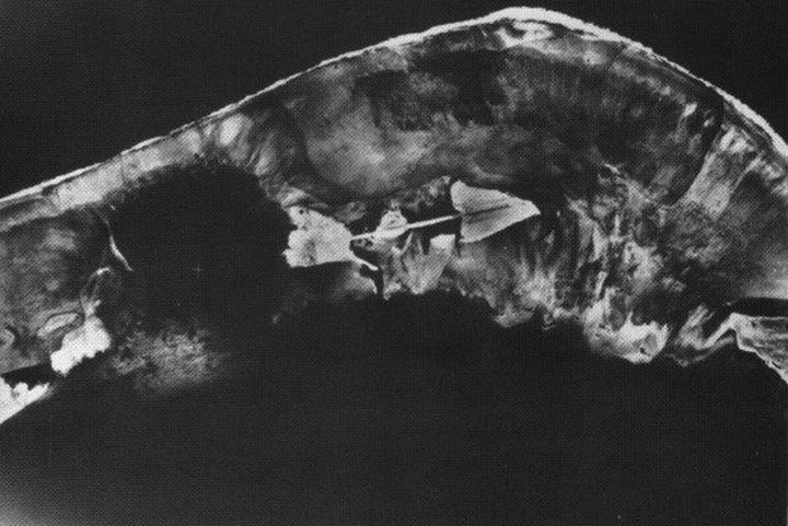 A handout photo shows an aerial shot of the Enewetak Atoll in the Marshall Islands after it was used for the first ever of the h-bomb test.