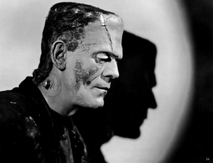 frankensteins monster essay But custom written essays on frankenstein monster a monster essay can be written to describe the most popular monstrous creatures, found in the world of literature.