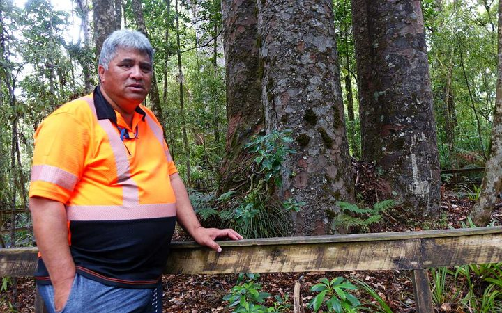 Snow Tane of Te Roroa wories about the effect of Kauri die-back on the Waipoua Forest.