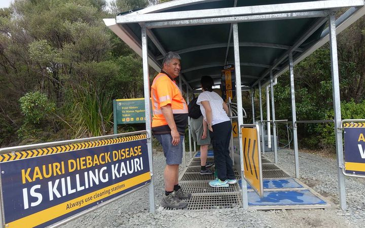DOC cleaning station at a track entrance in Waipoua Forest.