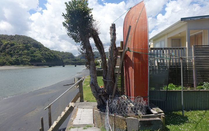 The pōhutukawa planted by two air force veterans as a symbol of their friendship in 1951.