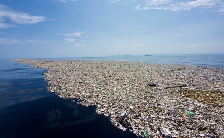 Plastic waste floating off the coast of Honduras in September this year.