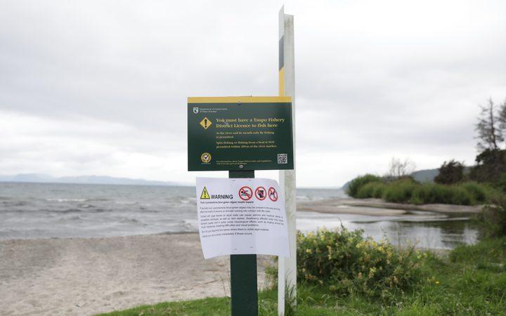 Signs warning of algae bloom in Taupō Lake last year.Photo/ Rebekah Parsons-King