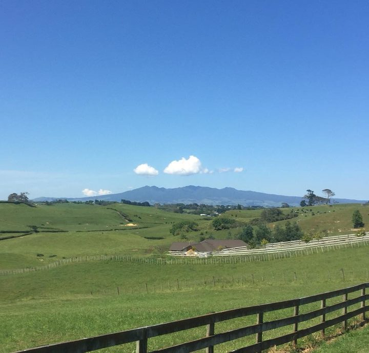 A view of the Pirongia Hills in the distance above rolling hills.