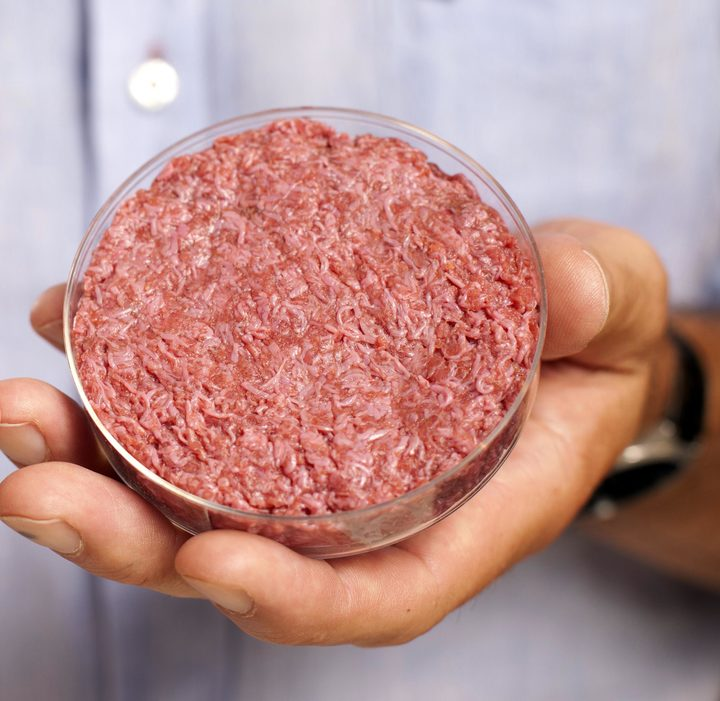 Dr Mark Post's lab cultured meat.
