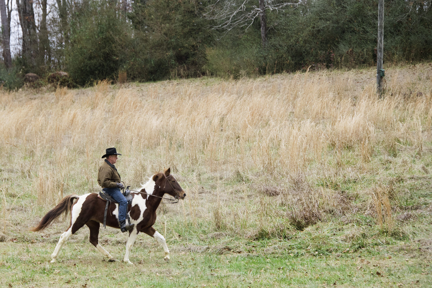 Republican Senatorial candidate Roy Moore rides his horse, Sassy, to the polling station to vote in  Gallant.