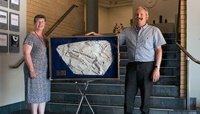 Friends of Waikato Museum President Alison Gibb and Hamilton Junior Naturalist Club President Mike Safey with the giant penguin fossil replica.