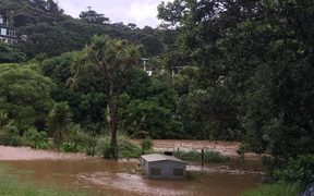 Flooded Piha camping ground