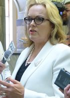 Judith Collins speaking to reporters on Wednesday.