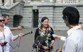 Julie Anne Genter launches bid to be Greens co leader