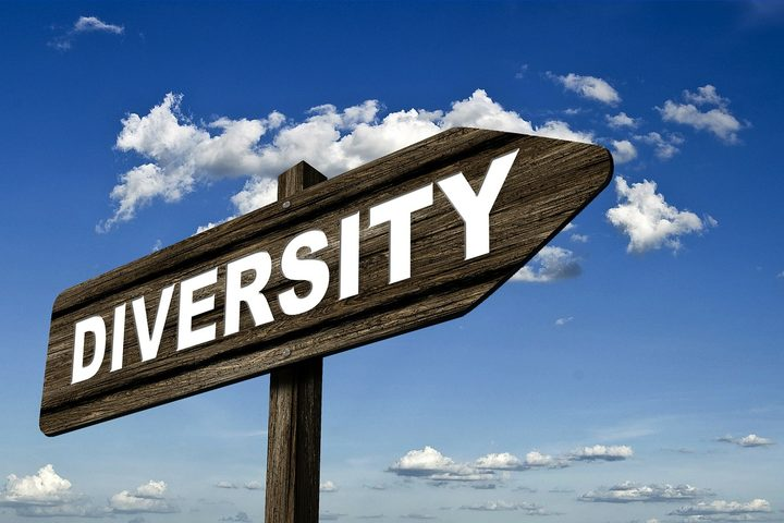 Heading down the diversity route isn't necessarily easy.
