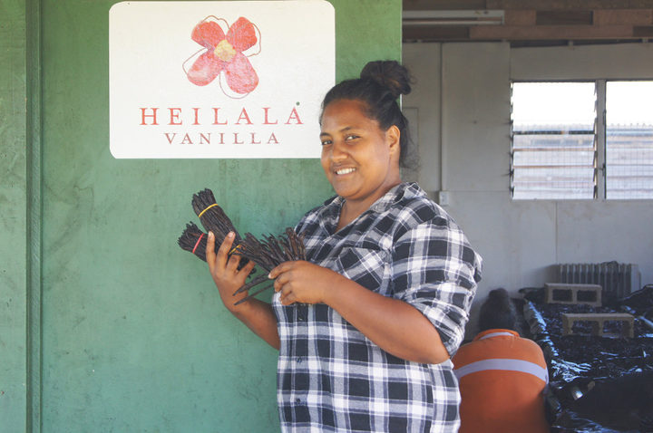 Heilala Vanilla 'Eua Manager Sela Latu pictured with 2017 harvest vanilla beans.