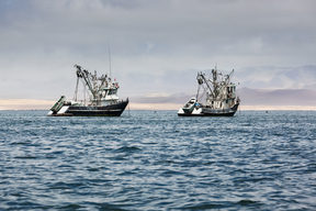 File photo of fishing vessels.