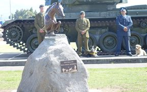 A New Zealand War Animal Memorial was unveiled at the National Army Museum in Waiouru.