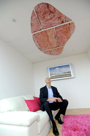 Peter Garrett at the start of the insulation scheme.