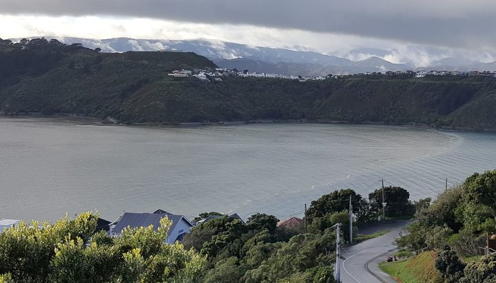 After heavy rain, a plume of muddy flood water from the Hutt River is pushed up Evans Bay by an incoming tide. The freshwater is floating on top of the seawater.