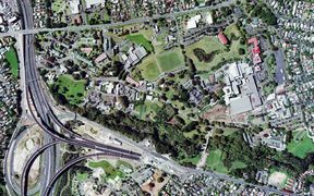 The land that will be developed for new homes in Mt Albert.