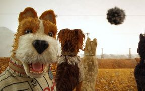A still from the Wes Anderson animated film Isle of Dogs