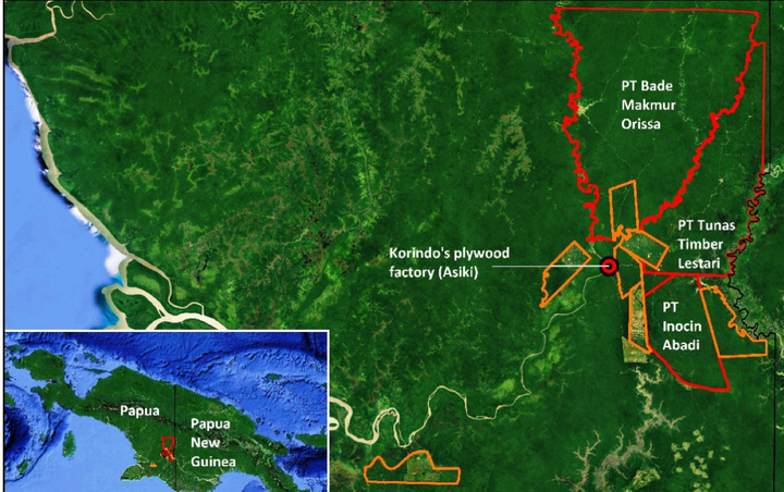 Location and concession boundary of PT Inocin Abadi, as well as other Korindo Group logging concessions (in red) and oil palm concessions (in orange).