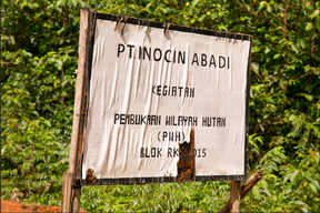 Signpost for Korindo's  PT Inocin Abadi logging concession