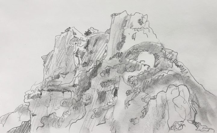 Bush-covered cliffs on Aorangi Island, sketched by Abby McBride.