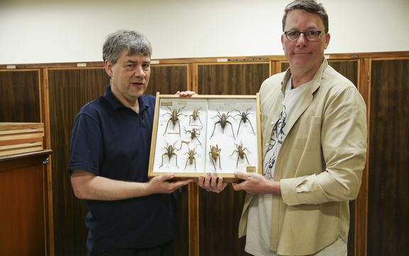 Te Papa entomologist Phil Sirvid and Sir Richard Taylor with one of New Zealand's most iconic insects, the wētā.