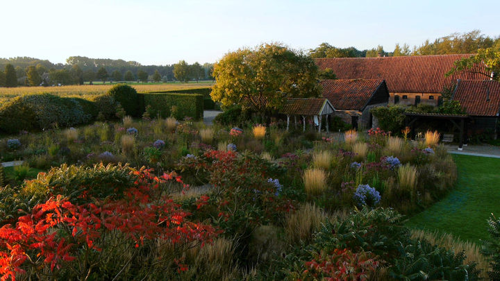 The gardens at Hummelo in the fall from the film Five Seasons: The Gardens of Piet Oudolf