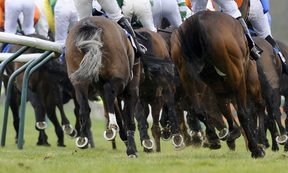The case has been labelled the biggest scandal in Australian horse racing.
