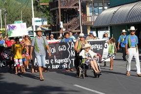 Support for appeal application over judicial review of Government decisions regarding industrial purse seine fishing in Cook Islands waters.