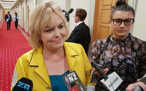 National's housing spokesperson, Judith Collins.