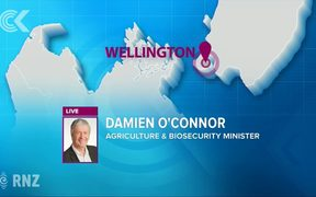 Damien O'Connor -  Why eradication was the right decision: RNZ Checkpoint