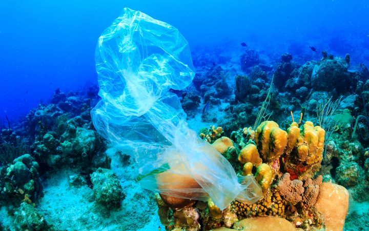 A discarded plastic rubbish bag floats on a  coral reef