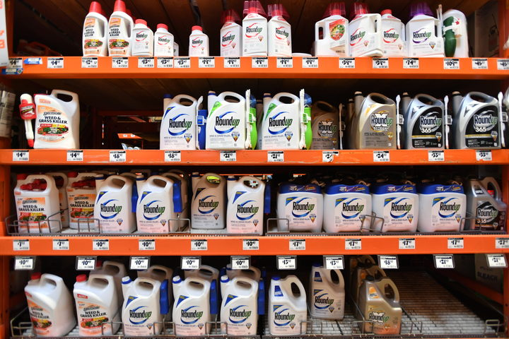 A federal judge has allowed hundreds of lawsuits accusing a chemical giant of ignoring health risks of its top-selling weed killer Roundup.
